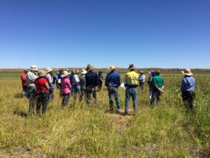 Chris Schelfhout discussing the results of some of the trials including Rhodes grass and a sorghum varieties and a range of temperate and tropical legumes.