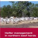 Front cover of the 'Heifer management in northern beef herds' manual