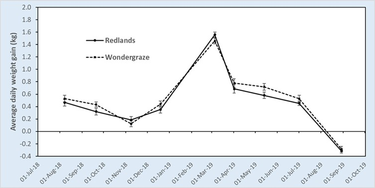 Graph of daily liveweight gain of steers grazing Redlands and Wondergraze leucaena over 427 days.