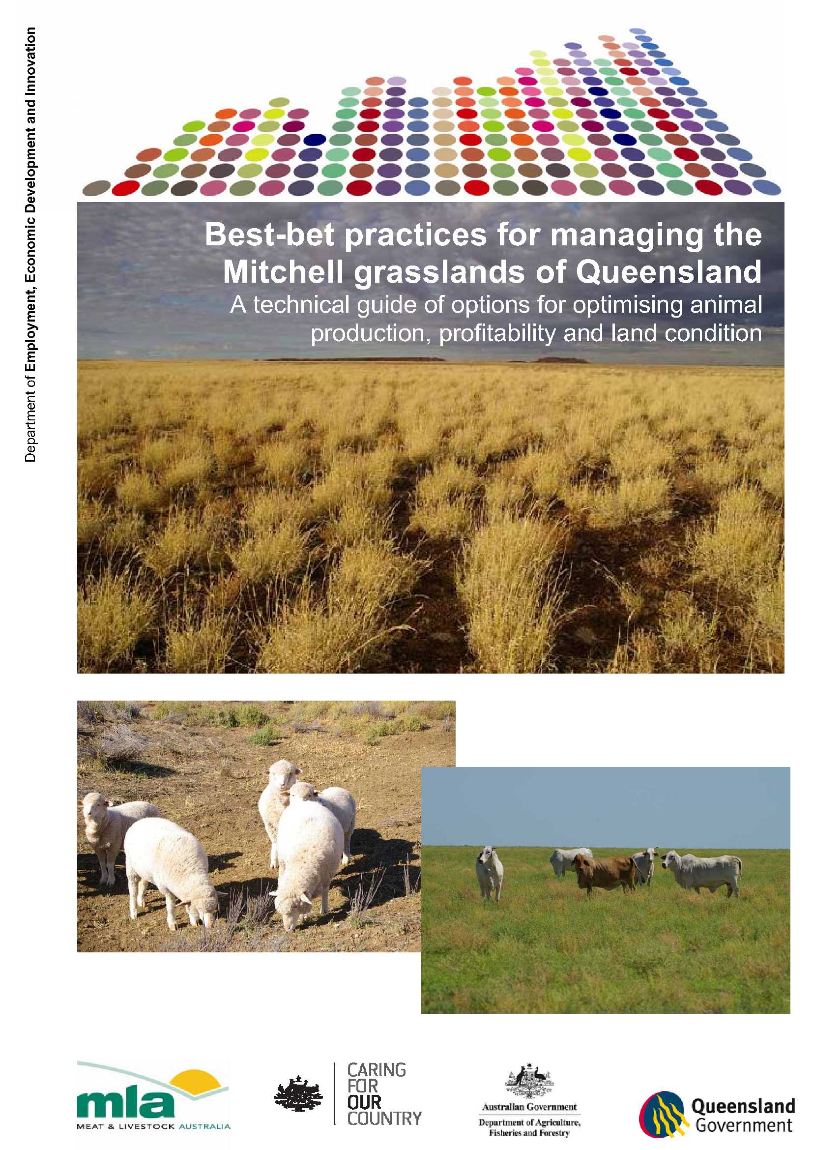 Cover page of the Best-bet practices for managing the Mitchell grasslands of Queensland