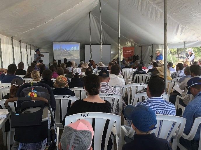 Many people in a marquee watch a presentation on a portable projection screen as the property owner provides an overview of using walk over weigh technology in western Queensland.