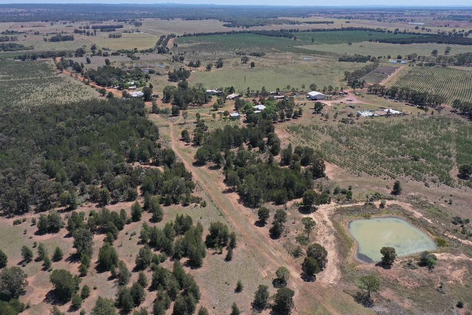 Remnant vegetation, leucaena, natural vegetation