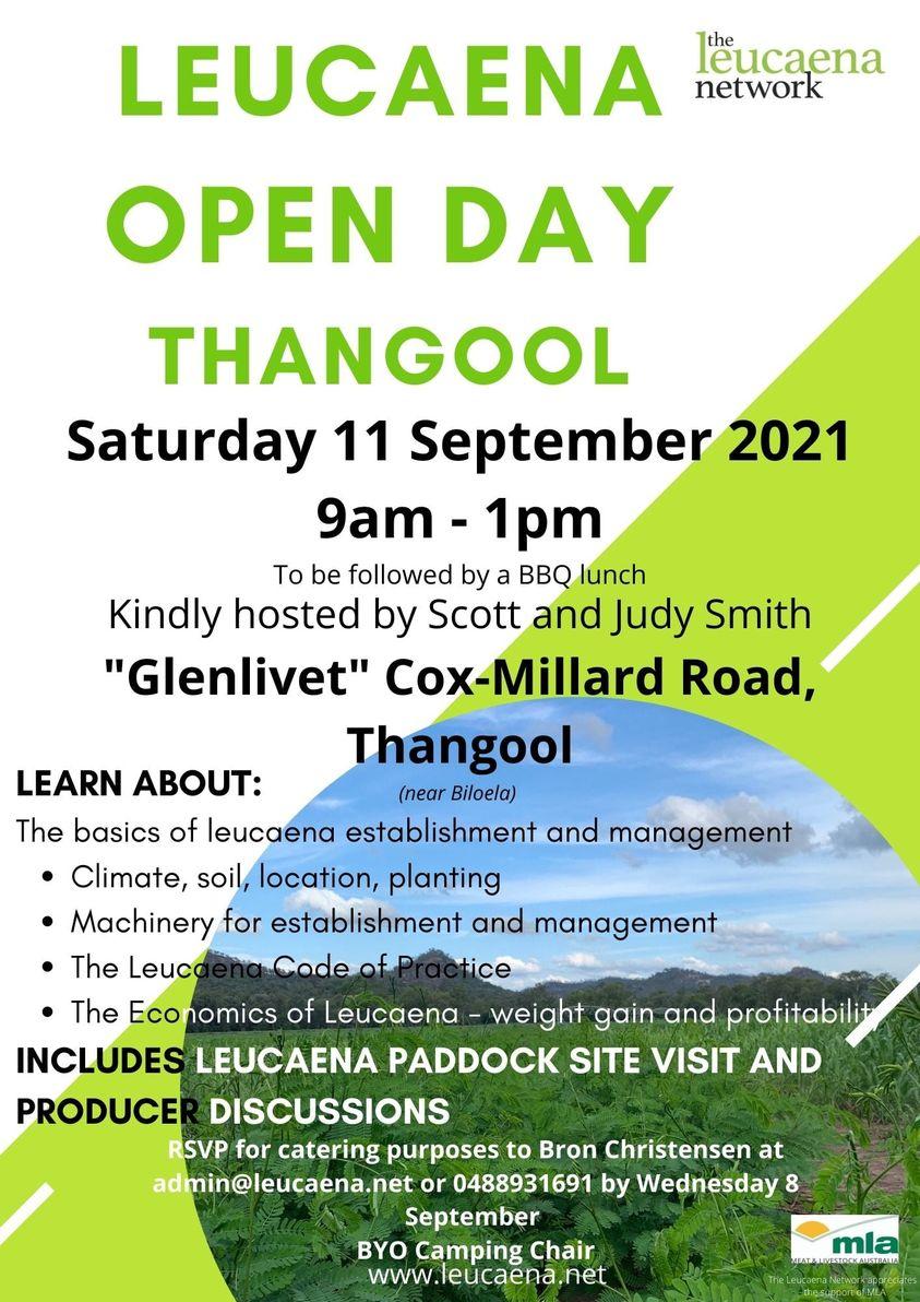 Leucaena Open Day Thangool
