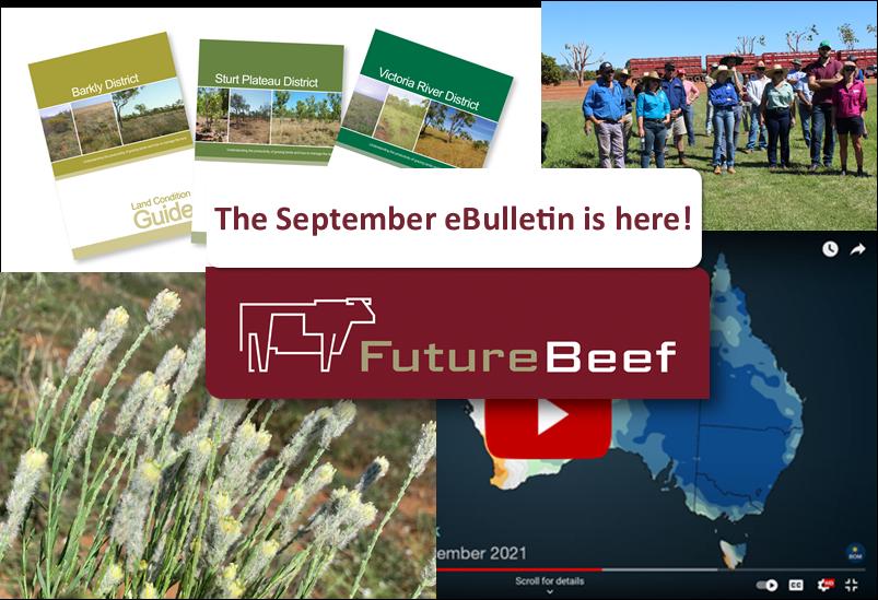 September eBulletin
