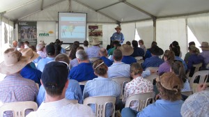 Participants at the Adelaide River BeefUp forum